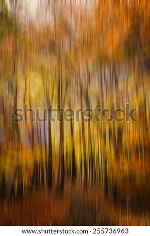 Abstract forest with motion blur, Abstract colourful background