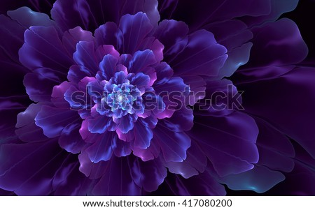 Abstract fractal, wavy violet-blue decorative flower, dark background