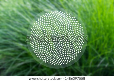 Abstract geometric sacred scientific background with Fibonacci dots pattern on the background of blurred green grass.