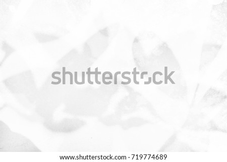 abstract gray background leaf shadow #719774689