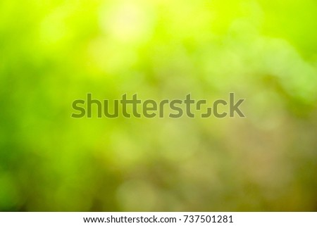 Abstract green blur background on natural. Light and plant with bokeh. #737501281