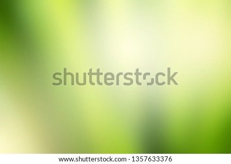 Abstract green blurred background with space for text or image. Nature gradient backdrop with brightness lighting. Ecology and environment concept for graphic design, banner or poster.