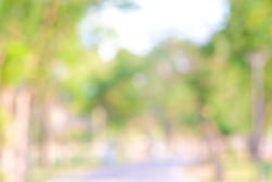 Abstract green blurred city park day light nature background