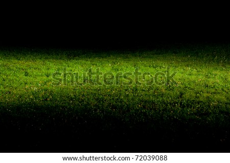 abstract green lawn