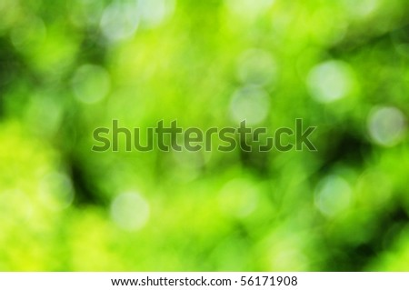 abstract green nature bokeh background with copyspace