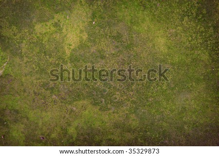 Abstract grunge background texture with space for text