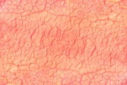 Abstract grunge pink background texture