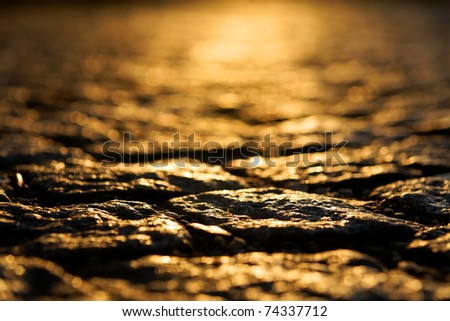 Abstract image of pavement bricks in sunset light