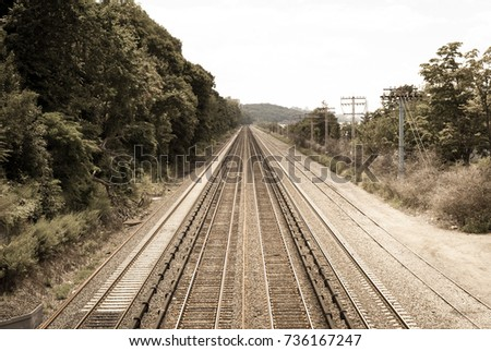 Abstract image of train tracks going to vanishing point. Long transit tracks in forest tree lined area. Industrial art and background. Abstract colors.