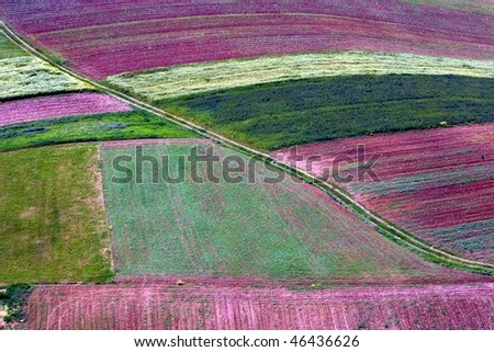 Abstract landscape, Aerial view of colorful fields