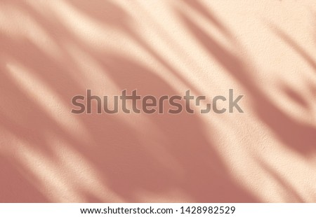 Abstract leaves shadow background on concrete wall texture for background and wallpaper, nature art on wall, rose gold  shadow background