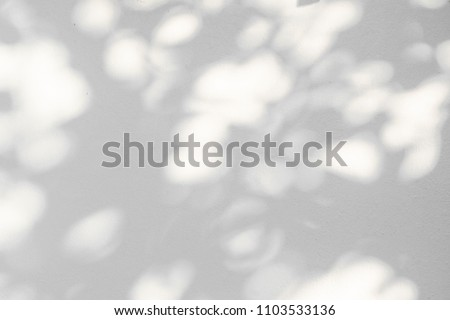 Abstract leaves shadow background with light bokeh, natural leaves tree branch falling on white wall texture for background and wallpaper, black and white monochrome tone