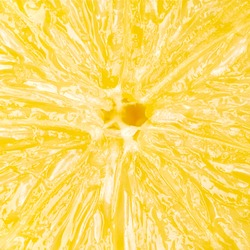 Abstract lemon macro for background