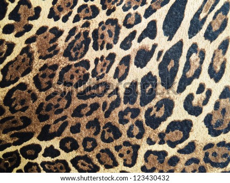 Abstract leopard macro