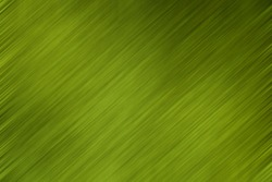 Abstract Light and Stripes Green Textured Pattern Background with Copy Space for Text Decorated.