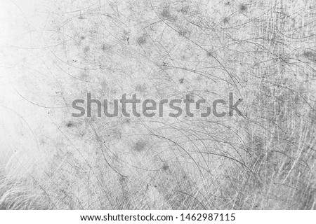 abstract light scratch background / white scratch damage, industrial wall material #1462987115