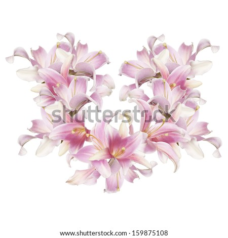 Abstract love Heart of the petals flowers exotic pink lily