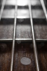 Abstract macro shot of an electric bass guitar frets with rosewood fingerboard close up