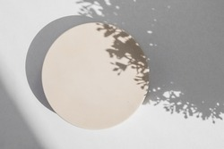 Abstract minimal scene with geometrical form. Cylinder podium on white background with floral shadow. Abstract background. Scene to show cosmetic podructs. Showcase, display case. 3d render.