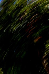 Abstract motion-blurred tree with colorful light streaks and dark shadow area