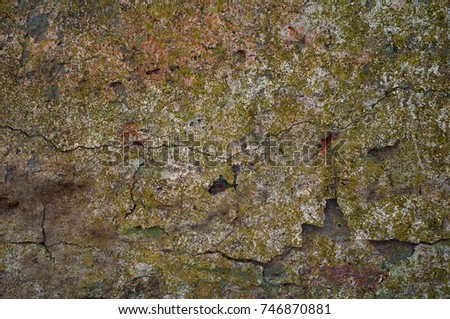 Abstract multicolor grunge background with abstract colored texture. Various color pattern elements. Old  vintage scratches, stain, paint splats, brush strokes, dots, spots. Weathered wall backdrop #746870881