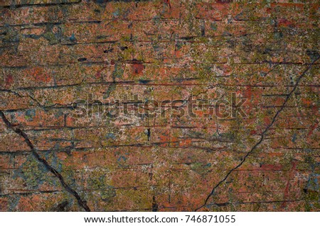 Abstract multicolor grunge background with abstract colored texture. Various color pattern elements. Old  vintage scratches, stain, paint splats, brush strokes, dots, spots. Weathered wall backdrop #746871055