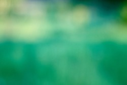 Abstract natural background of grass, space for text