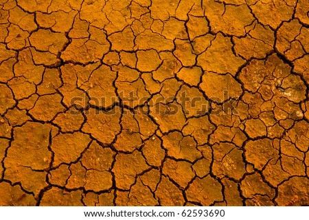 Abstract natural background with cracked earth