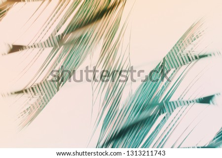 Abstract natural geometrical symmetry decor art background. Pattern from tropical plant palm leaves. High resolution. Toned pink turquoise colors. Banner boho style. Double exposure #1313211743