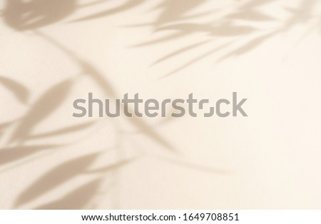 Abstract natural leaves shadows  background on beige color wall texture . copy space. floral card Stockfoto ©