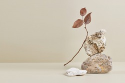 Abstract nature scene with composition of stones and dry branch. Neutral beige background for cosmetic, beauty product branding, identity and packaging. Natural pastel colors. Copy space, front view.