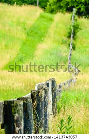 Abstract of weathered split-rail fence along hillside of onetime pasture with a multi-use trail mown across tall grass, with digital oil-painting effect, for rural, equine, and vintage themes