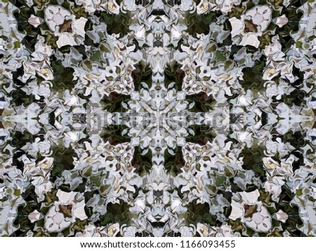 Abstract ornamental pattern of the modified spread image of white flowers Alyssum. Symmetrical abstract pattern in natural colors of alyssum flowers.