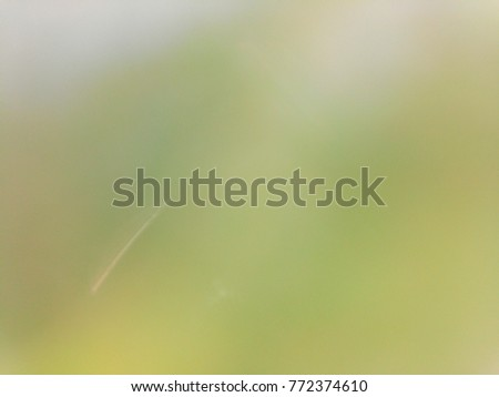 Abstract out of focus lights coming from the mother nature with abstract background of green leaves.  #772374610