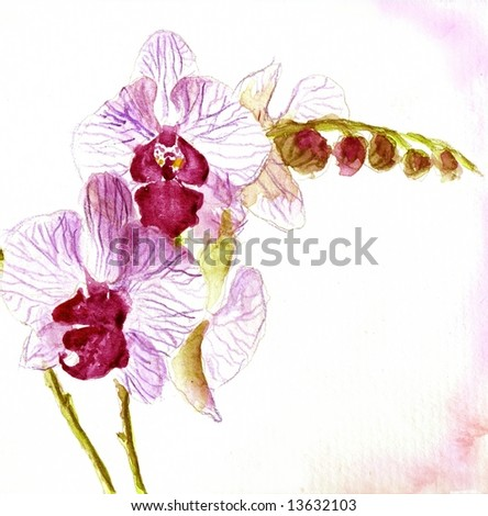 Abstract painted floral background in different shades of rose and violet with romantically orchid flower on white. Art is created and painted by photographer