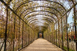 Abstract perspective view of arched tunnel, pergola for climbing plants and flowers in the park in Vienna, Austria on autumn day.