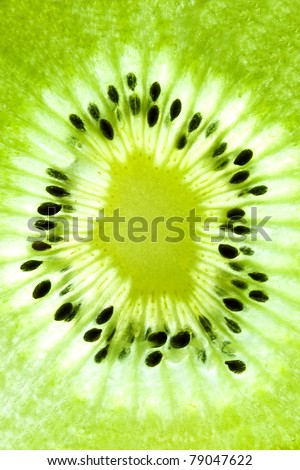 abstract photo of a kiwi closeup