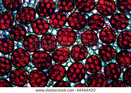Abstract photo of cell fission under a microscope