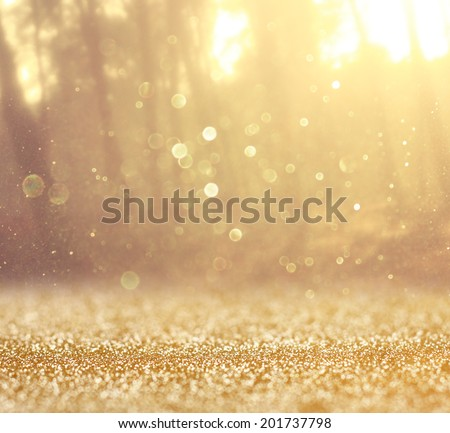 abstract photo of light burst among trees and glitter bokeh lights. image is blurred and filtered .