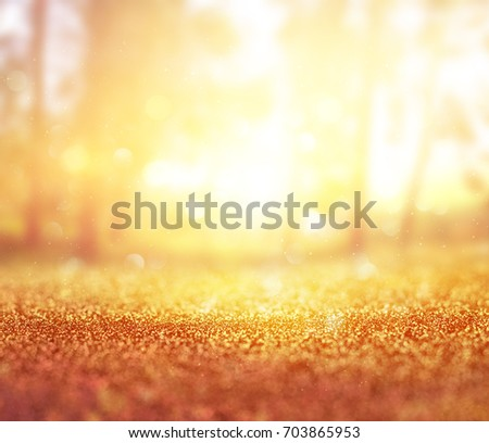 abstract photo of light burst among trees and glitter bokeh lights. image is blurred and filtered . #703865953