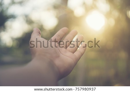 abstract picture of nature hand with sunlight #757980937