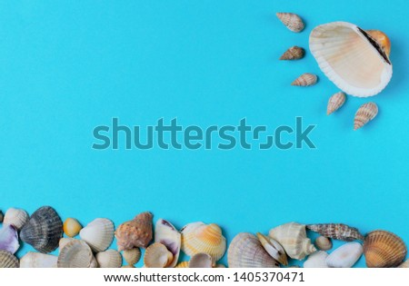 Abstract picture of seashells on a blue background, space for text, bright colors, high contrast.