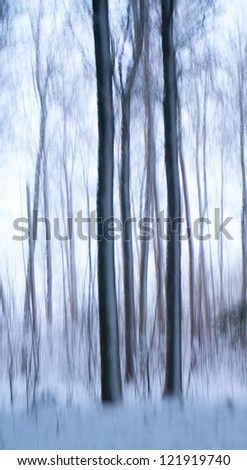 Abstract picture of tree trunks in winter