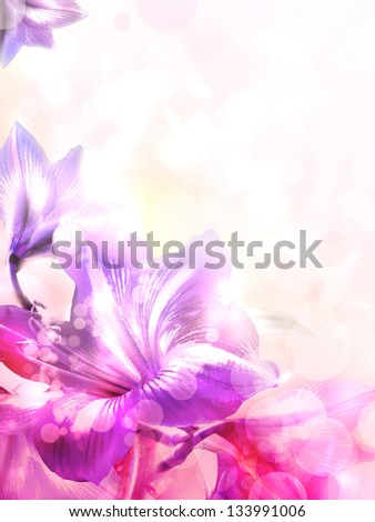 Abstract pink flower card/ Beautiful flower background/ Spring background