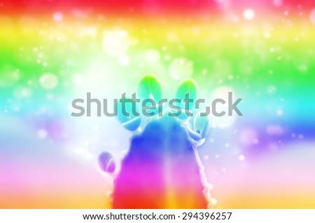 Abstract Rainbow Art Soft Focus Blurred Style of Kalanchoe Blossfeldiana Leaves Background Texture