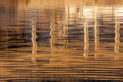 Abstract reflection on the water