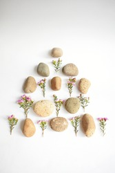 Abstract Rock pebble and flowers in pyramid or triangle arrangement, Australian native wild flower pastel pink Geraldton Wax chameleucium uncinatum, spa concept, peace, relax, meditation,  Boho style