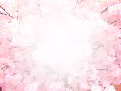 abstract sakura blossom, Soft focus,Background with pink color filter