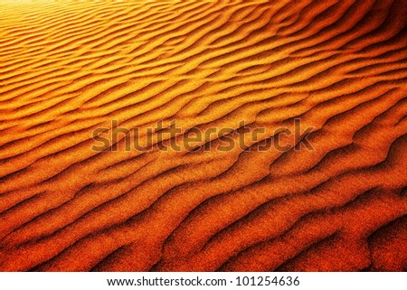 Abstract sand pattern in Thar Desert, India