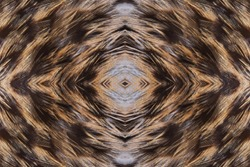 Abstract seamless symmetric pattern of feathers of wild duck close-up as background. Macro of the brown feathers of a duck. An ornamental surreal tracery of bird feathers. The image with mirror effect
